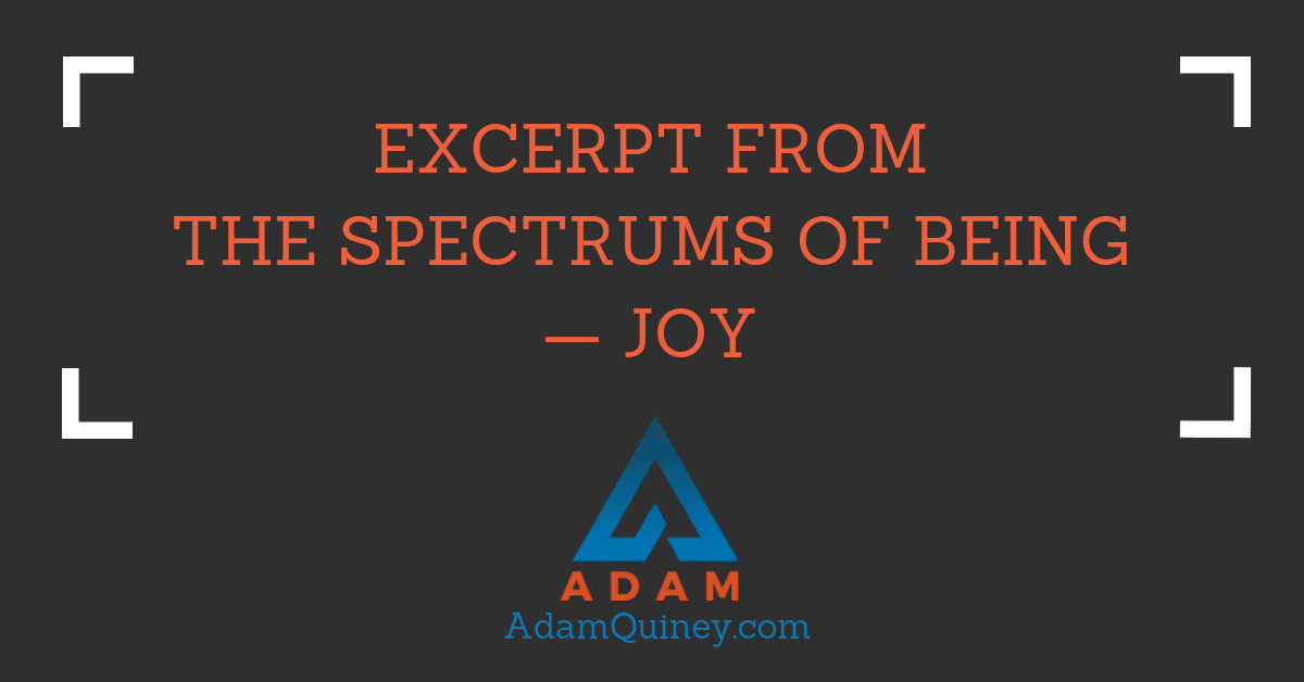 Excerpt from The Spectrums of Being — Joy