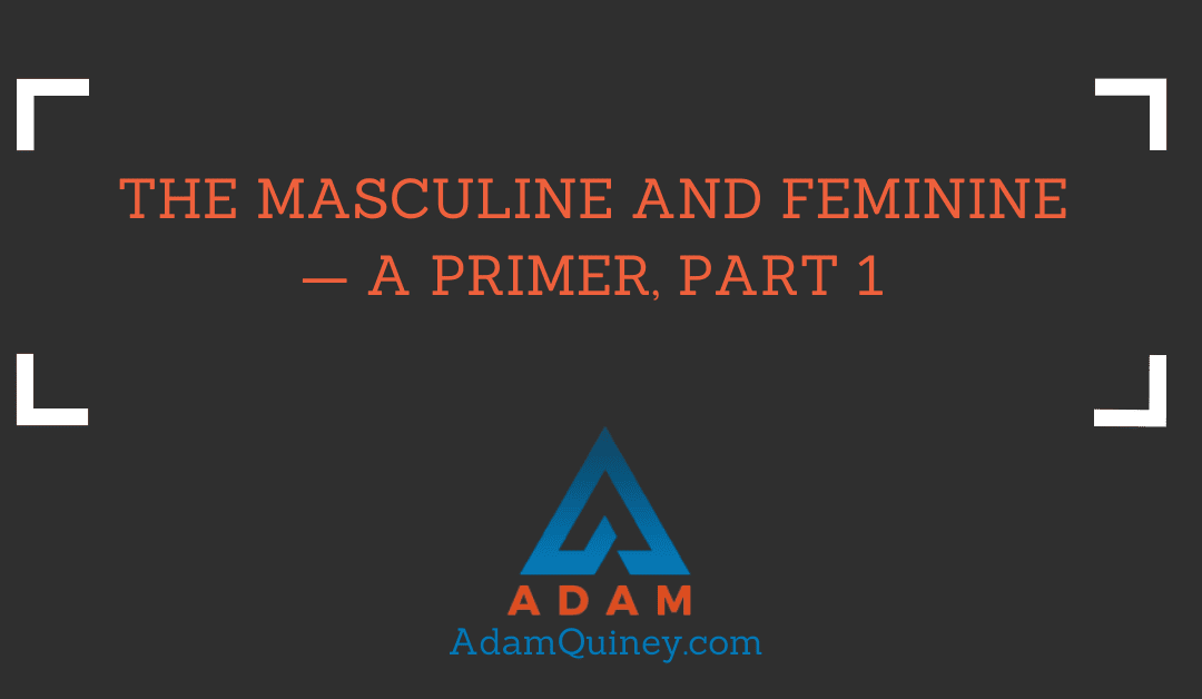 The MASCULINE AND FEMININE — A Primer, Part 1